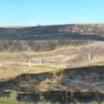 Пожари опустошиха лозя, вили и пасища в Силистра