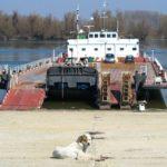 Европейски глоби заплашват страната заради ферибота Силистра -Кълъраш