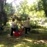 Общината направи проверка относно случая за събирането на боклук в трибагреника