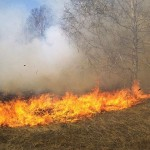 Загасени са пожари на сухи треви