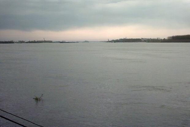 Рекорден брой участници се включиха в преплуването на река Дунав при Силистра