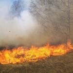 """На 7 сигнала за произшествие са реагирали през вчерашния ден екипи на ОУ""""Пожарна безопасност и защита на населението"""""""