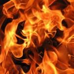 2 тона фураж горя в град Алфатар
