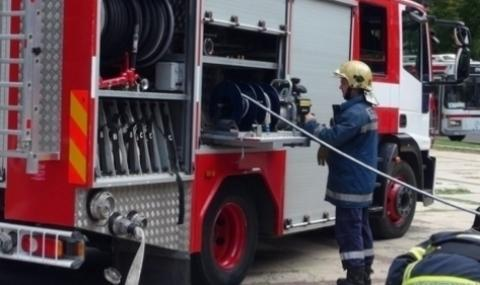 Пожарникари спасиха куче в Тутракан
