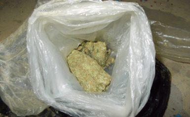 Заловиха наркопласьори в Тутракан