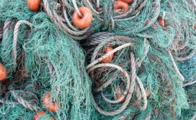 Отново откриха незаконни рибарски мрежи в езерото Сребърна