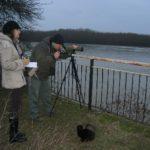 Днес започва  35-тото Среднозимно преброяване на водолюбивите птици