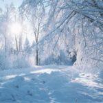 Критичните 80 % е ледоходът по река Дунав при Силистра, пътищата в града са труднопроходими