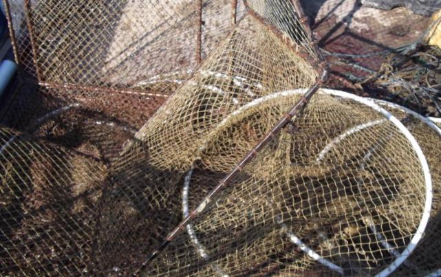 Рибари от Силистра протеститират срещу нормативна уредба