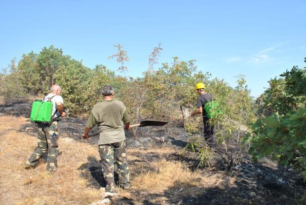 Общо 1300 декара са спасени от опожаряване