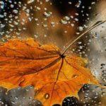 Типична есен ни очаква през октомври